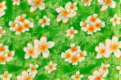 Painting flower on fabric. Painting traditional flower of Thailand on fabric Stock Images