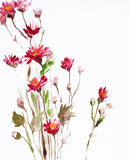 Painting of flowers. Watercolor painting of flowers, use as background vector illustration