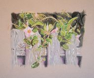Painting of flowers and leaves on wooden fence Royalty Free Stock Image
