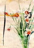 Painting flowers narcissus old paper Royalty Free Stock Image