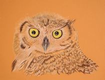 Painting of Great Horned owl. Very detailed artwork of a Great Horned owl painted with color pencils.  Beautiful as greeting cards Royalty Free Stock Photos