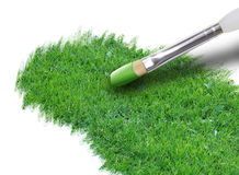 Painting Green Grass on White. A paintbrush is painting bright green grass on a white background. Use it for an environment or season concept Royalty Free Stock Image