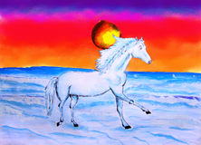 Painting Of Horse and Sun Set Royalty Free Stock Image