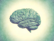Painting of the human brain Royalty Free Stock Image