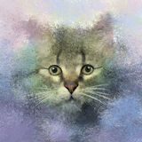 Painting illustration of portrait cat Stock Image
