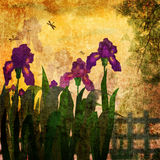 Painting iris flowers grunge vintage background Stock Photography