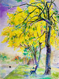 Painting  landscape colorful of golden tree flowers in park street. Watercolor painting original landscape yellow color of golden tree flowers in park street Royalty Free Stock Images
