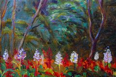 Painting landscape oil color on canvas of Salvia flowers. Painting landscape oil color on canvas of Salvia flowers and emotion in the forest background Stock Photography