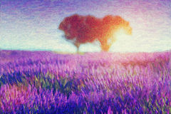 Painting of lavender fields vector illustration