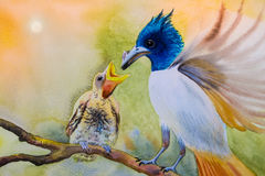 Painting  mother bird, baby bird, couple bird on a branch. Watercolor landscape original painting on paper colorful of  mother bird, baby bird, couple bird on a Royalty Free Stock Image