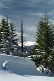 Painting of Nature. Winter picture on Tulisa Mountain Stock Photography