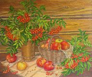 Painting oil still life mountain ash and apples. Original painting. royalty free illustration