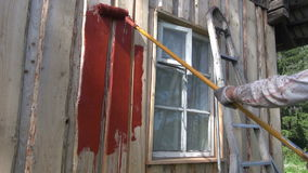 Painting old wooden house wall with paint roller stock video
