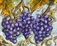 Ripe Red Grape Illustration Painting. Painting of organic ripe red grapes in a vineyard Royalty Free Stock Image