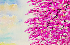 Painting on paper colorful of wild himalalan cherry flowers Royalty Free Stock Photo
