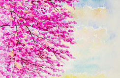 Painting on paper colorful of wild himalalan cherry flowers Stock Photo