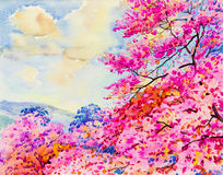 Painting pink color of  Wild  Himalayan  cherry and emotion Stock Image