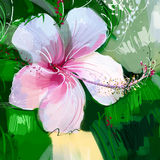 Painting Pink hibiscus flower Royalty Free Stock Photo