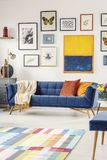 Painting and posters above navy blue couch in modern living room. Interior. Real photo royalty free stock images