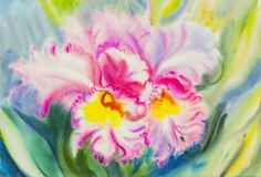 Painting purple,pink color of orchid flower and green leaves Royalty Free Stock Image