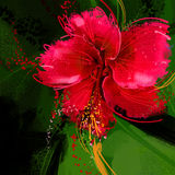 Painting Red hibiscus flower Royalty Free Stock Photography