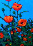 Painting of Red Poppies, Impressionism. My impressionist painting of some brilliant red-orange poppies against a striking blue sky Stock Images