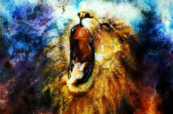 Painting of a roaring lion on a abstract desert Stock Images
