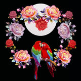 Painting  of roses flowers and  Macaw bird. Royalty Free Stock Photo