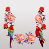 Painting  of roses flowers and  Macaw bird. Royalty Free Stock Image