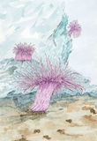 Painting of a Sea anemones polyps Royalty Free Stock Image