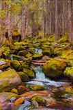Painting of a small river with big boulders and trees. Painting of a small river with clear water and big boulders covered with green moss and surrounded by big Royalty Free Stock Photography