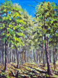 Painting Spring forest. Green trees, blue sky, shadows on ground. Royalty Free Stock Images
