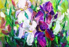 Painting still life oil painting texture, irises impressionism a. Rt, painted color image, backgrounds and wallpaper, floral pattern on canvas royalty free stock photos
