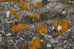 Painting on the stone wall Royalty Free Stock Photography