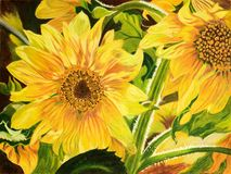 Painting of sunflowers Royalty Free Stock Photography