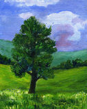 Painting of a Sycamore tree in a Summer landscape. Original painting of a single Sycamore tree in a British summer landscape of green fields, blue sky and clouds Royalty Free Stock Photos