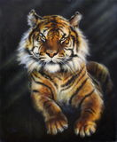 A painting of a tiger on black background Royalty Free Stock Photos