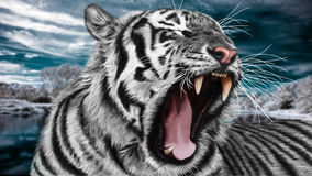 Painting tiger Stock Photos