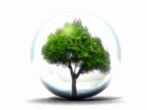 Painting tree. Green tree in a bubble Royalty Free Stock Image
