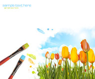 Painting tulips landscape Royalty Free Stock Photos