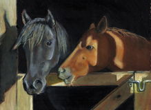 Painting of Two Horses At Gate. Oil Pastel painting of two horses looking out into the sunshine from behind a barn gate Royalty Free Stock Photography