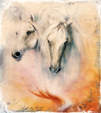 Painting two white horses, vintage abstract background. Stock Photography