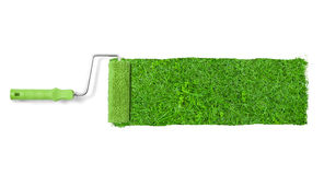 Painting the wall with grass Royalty Free Stock Image