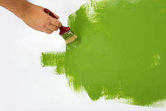 Painting a wall green Royalty Free Stock Image