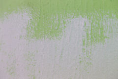 painting a wall from green to white color Stock Image