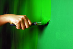 Painting walls. Painting a wall with paint brush in green Stock Photography