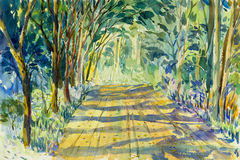 Painting watercolor landscape original colorful of tunnel trees. In countryside and emotion green  leafl background Stock Photos
