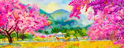 Painting pink color of Wild himalayan cherry flowers. Painting watercolor landscape pink color of Wild himalayan cherry flowers and man, woman, cycling, fitness Stock Illustration