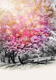 Painting watercolor of wild himalayan cherry flowes. Painting watercolor landscape original pink red color of wild himalayan cherry flower and emotion sunlight royalty free illustration