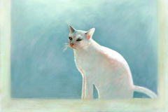 Painting of a white cat Royalty Free Stock Photo
